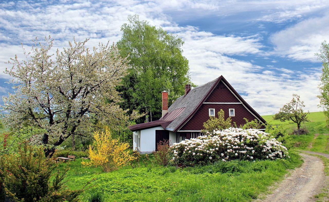 Jardim, traga a natureza para sua casa